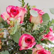 Varigated pink and white roses in clear glass vase
