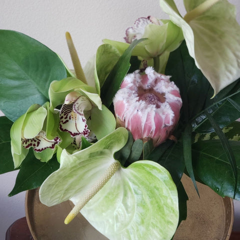 tropical flowers of anthirium, orchids, protea and leaves in white ceramic vase