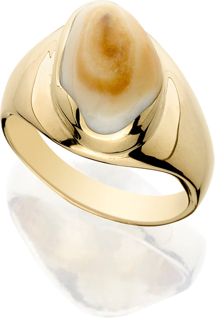 EIR505; 14K Yellow Gold Man Ring w/Elk Ivory