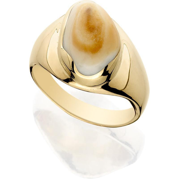 EIR504; 14K Yellow Gold Elk Ivory Man's Ring