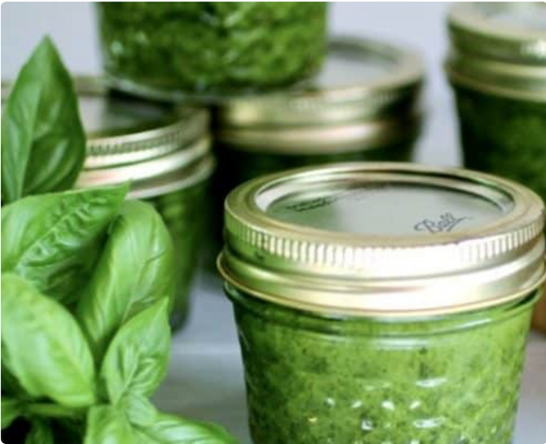 PURE Juicer Recipe - Pesto