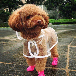 Rain Jacket For Dogs