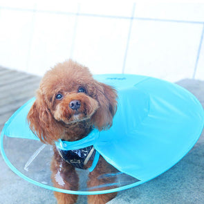 Dog Raincoat With Umbrella