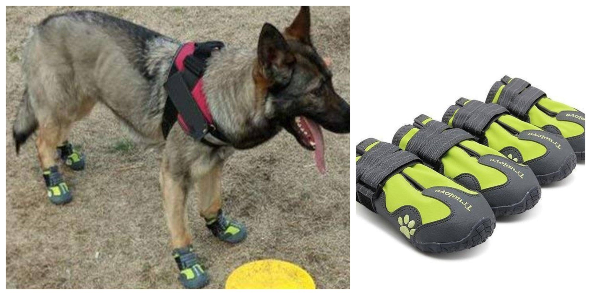 Amazing lightweight Breathable German Shepherd Dog Shoes