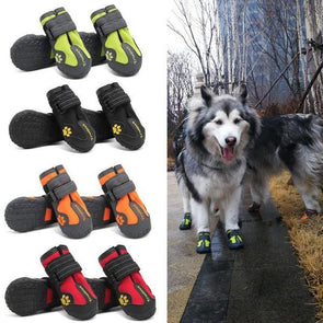 Anti-mud Dog Shoes | Amazing Shoes for Your Lovely Pooch!! GlamorousDogs