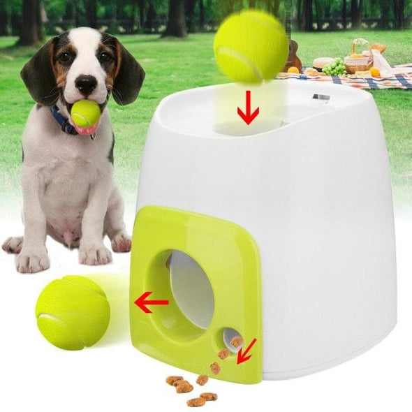 Automatic Ball Launcher For Dogs | Interactive Dog Toys Outdoor Toy Glamorous Dogs