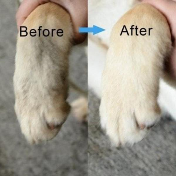 Dog Paw Cleaner With Soft Silicone Bristles – The Easiest Solution to Cleaning Dog Paws
