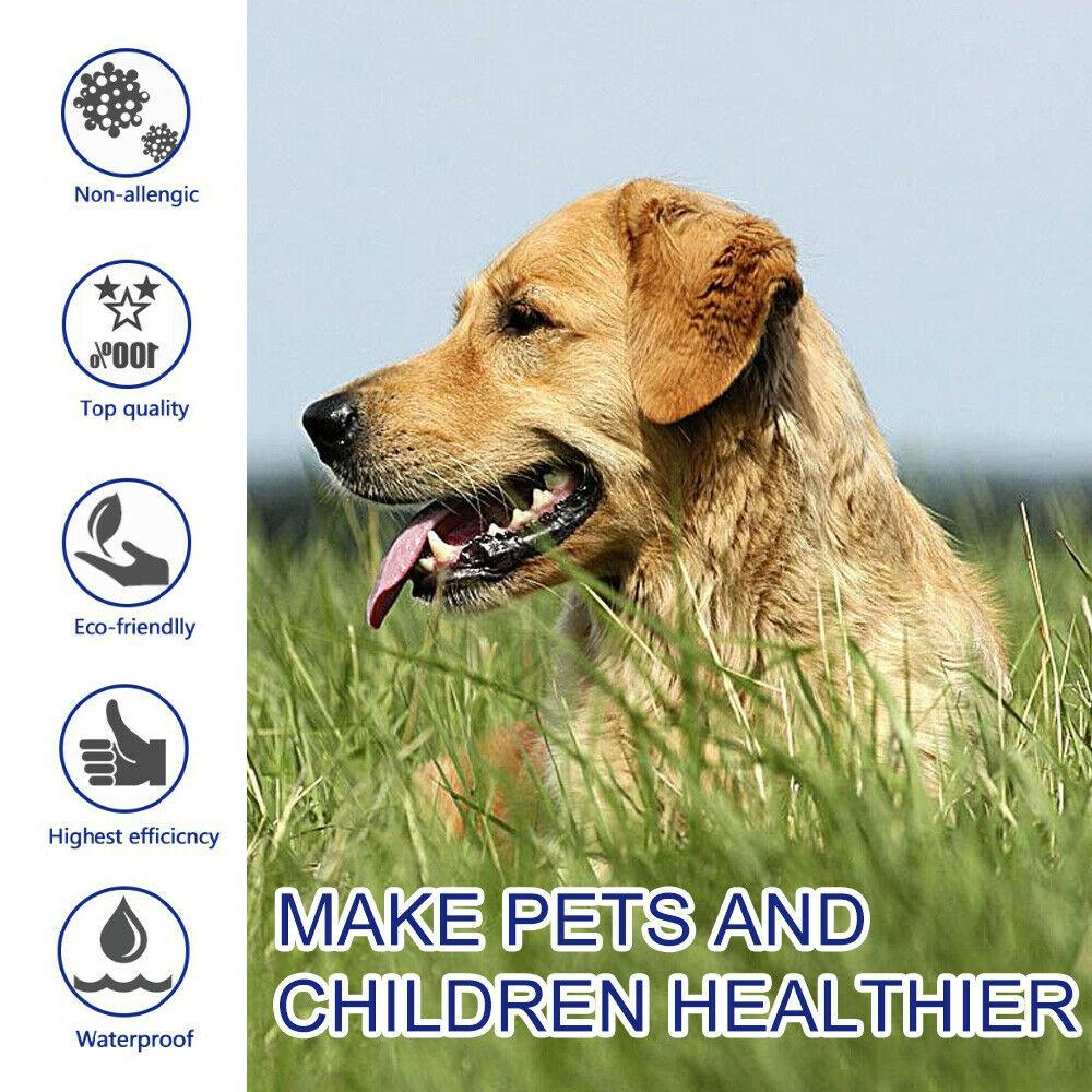 Flea And Tick Collar For Dogs | Shield Pet Pro Collar