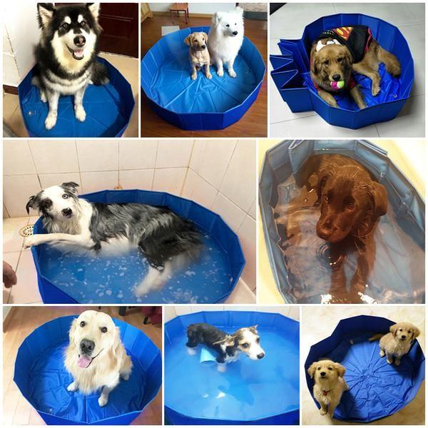 Foldable Swimming Pool for Dogs | Beat the Summer Heat