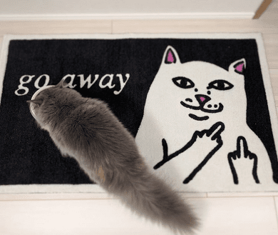 Go Away Cat Doormat