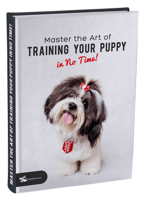 Master the Art of Training Your Puppy in No Time! Glamorous Dogs Shop - Glamorous Accessories for Your Dog + FREE SHIPPING