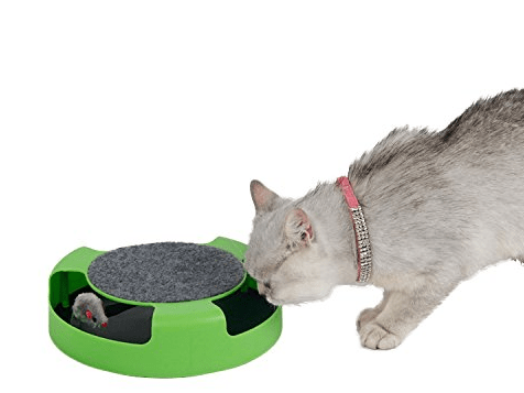 Mouse Catch Cat Toy Fun Stunning Pets
