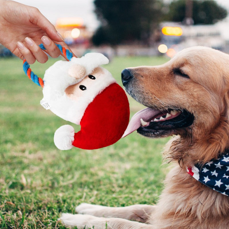 Best 2020 Christmas Chew Toy For Your Dog (Christmas Gift)