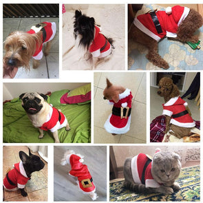 Santa Claus Dog and Cat Costumes GlamorousDogs