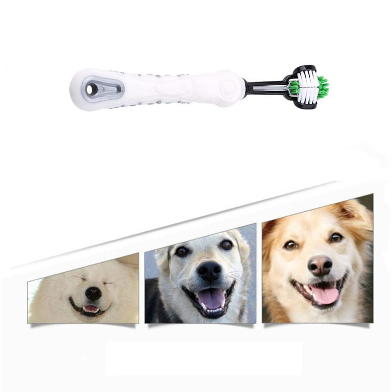Three Sided Pet Toothbrush | The Best in Market