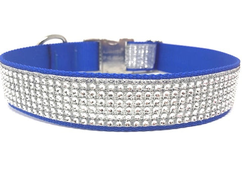 blue gold dog collar, rhinestone dog collar, dog collar for girls, boys, bling, sparkly