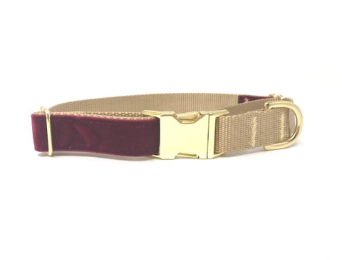 burgundy, maroon, gold, velvet, martingale dog collar, with metal buckle, personalized, engraved, small, medium, large, xl, training collar, puppy collar, trendy, fashion, upscale, girls, boys