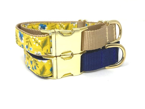 Martingale With Metal Buckle, For Girls, Yellow, Green, White, Gold, Navy Blue, Female, Personalized, Engraved, Choker Collar, Greyhound