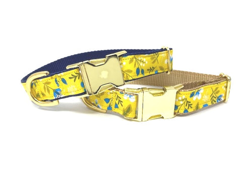Dog Collar For Girls, Blue,, Yellow, White, Green,  Gold, Personalized, Engraved, Fashion, Cute,  Bright, Colorful, Small, Medium, Large, XL