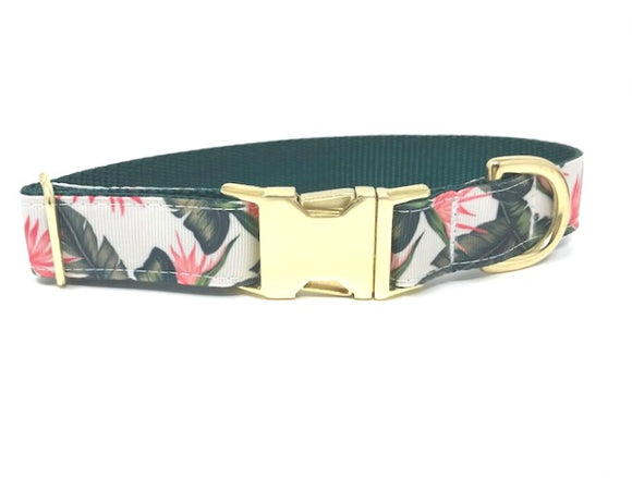 tropical, hawaiian, floral, pink, green, white, gold, dog collar, cat collar, pet collar, personalized, engraved, custom, fabric