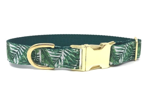 tropical, hawaiian, palm leaf, tree, green, white, gold, dog collar, girls, boys, personalized, engraved, custom, dog, cat, pet, small, medium, large, extra large