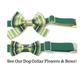 Green Dog Collar, Gold, Silver, Forest Green, For Boys, Girls, Personalized, Engraved, Custom, Puppy Collar, Cat Collar, Pet Collar