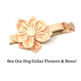 Lux Dog Collar, Peach, Gold, Rose Gold, For Girls, Female, Personalized, Engraved, Custom, Puppy Collar, Cat Collar, Nude, Flesh Color