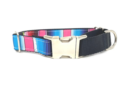 Martingale Choker Dog Collar With Buckle, For Girls, Pink, Purple, Blue, Serepe Stripe, Personalized, Engraved, Choker Collar