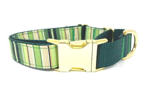 Green, Yellow, Gold, Stripe, Dog Collar, Martingale With Metal Buckle, For Boys, Girls, Personalized, Engraved, Boutique, Choker Collar