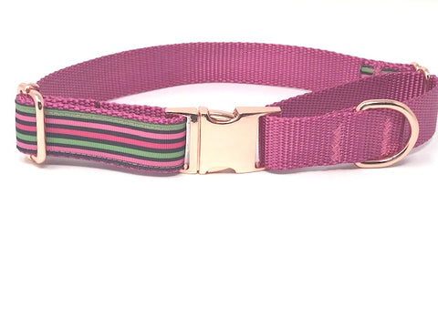 martingale dog collar, with metal buckle, for girls, stripe, pink, black, green, raspberry, rose gold, personalized