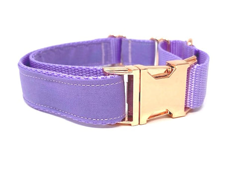 Martingale Dog Collar, With Buckle, Lavender, Lilac, Girls, Rose Gold, Personalized, Engraved, Custom, Choker, Puppy, Greyhound, Whippet