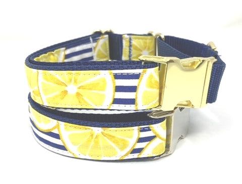 Martingale Dog Collar, W Metal Buckle, Lemons, Stripes, Yellow, Blue, Summer, Spring, Girls, Boys, Personalized, Engrave, Choke, Greyhound