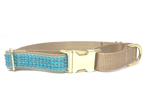 fancy, sparkly, teal and gold rhinestone martingale dog collar with buckle for girls or boys, fancy, small, medium, large, xl, personalized, engraved