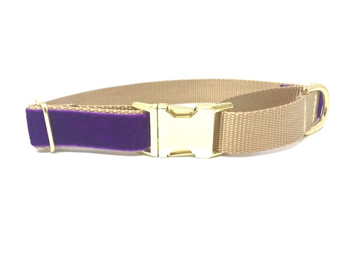 Purple, Gold, Velvet, Martingale Dog Collar, With Buckle, Girls, Boys, Small, Medium, Large, XL, Burgundy, Personalized, Engraved