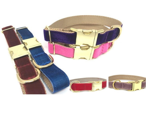 velvet dog collar, pink, purple, blue, red, rose gold, burgundy, maroon, girls, boys, personalized, engraved