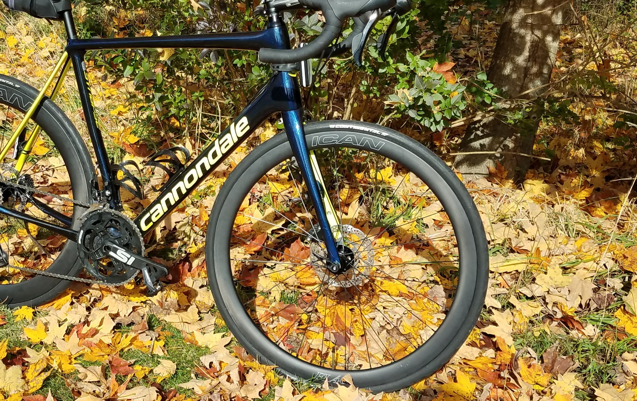 The trending road wheel -- with carbon rim and a disc brake