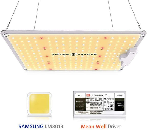 Spider Farmer Carte Quantum avec puces Samsung 301B et pilote dimmable MeanWell LED Grow Light Vente rapide