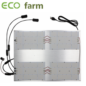 ECO Farm Lampe de Culture LED de Quantum 120W / 240W / 320W / 480W / 600W Dimmable avec Samsung LM301H + CREE 660NM + LG 395NM + CREE 730NM Chips