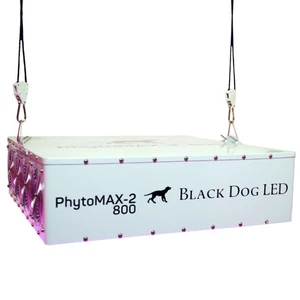 LAMPE DE CULTURE BLACK DOG LED PHYTOMAX-2 800 LED achats en ligne