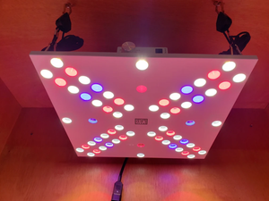 Optic LED Bloom Enhancer Array 120W Dimmable LED élèvent la lumière + UV + IR grande remise
