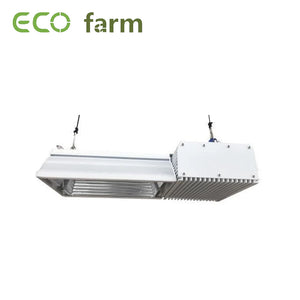 Eco Farm Lampe de Culture 2 Broches HPS 750W Plus-X B281 pour Culture Hydroponique