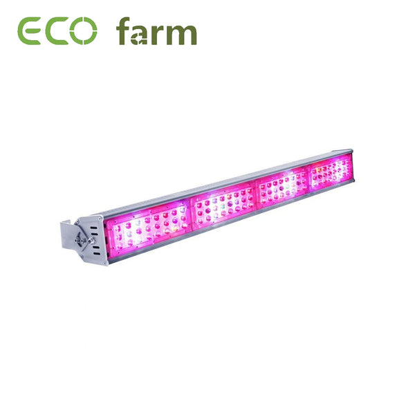 Eco Farm Lampe de Culture à LED 96x3 GA