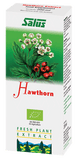 Hawthorn Plant Extract - Buy Healthy All Natural Vitamins Supplements
