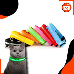 Cats Innovation™ LED Collar - Night Safety
