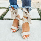 Remishoes Faux Suede Lace Up Chunky Heel Sandals