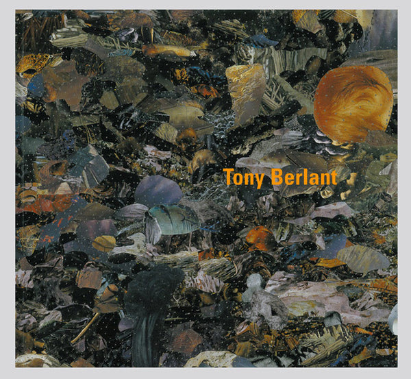 Tony Berlant: New Terrain