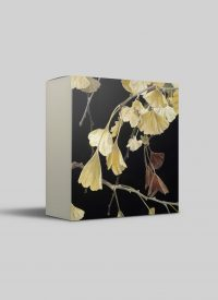 Cressida Campbell card pack - Gingko