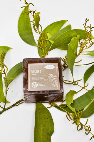 Merrika soap (Broad Leaved Wattle)