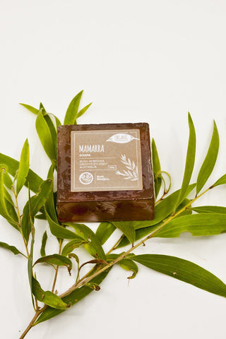 Mamarra Soap (Small Leaved Paperbark)