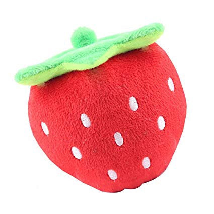 Squeaky Strawberry Plush Toy